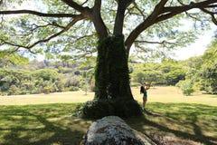 Lato wycieczka. Macierzysty i jej dziewczynko w tropikalnym ogródzie Obrazy Stock