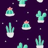Lato wzór z kaktusami w na czarnym tle flowerpots i trójboki wektor Fotografia Royalty Free
