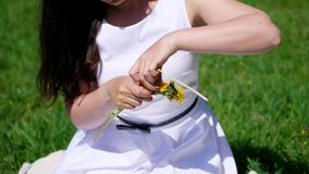 Lato, zakończenie up, brunetki kobieta w biel sukni, siedzi na zielonym gazonie, trawa, wyplata wianek żółci dandelions, zbiory wideo