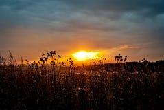 Lato zmierzch w polu Obrazy Royalty Free