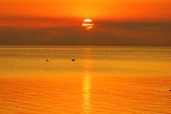 Lato zmierzchu pomarańczowy niebo i ptaki nad morzem fotografia stock