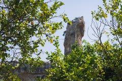"""Latomia del Paradiso †""""beroemd oriëntatiepunt van Archeologisch park in Syracuse, Sicilië, Italië royalty-vrije stock foto"""