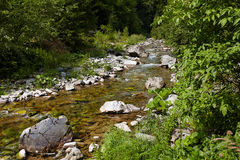 Latoritei river Royalty Free Stock Images