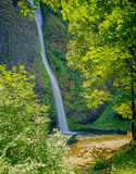 Latourel Falls, Oregon Royalty Free Stock Photography