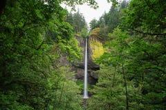 Latourell понижается водопад, Орегон Стоковые Фотографии RF