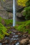 Latourell понижается в ущелье Рекы Колумбия, Орегон стоковые изображения