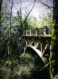Latourell понижается мост Стоковое фото RF