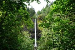 Latourell fällt Bereich Portlands Oregon im Frühjahr Lizenzfreie Stockbilder