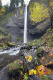 Latourell faller Oregon i höst royaltyfria foton