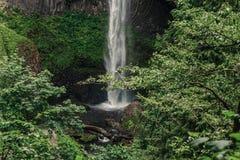 Latourell faller vattenfallet längs den Columbia River klyftan arkivbild