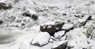 Latourell Falls Creek in Winter Ice and Snow Stock Images