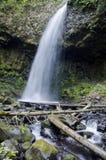 Latourell Falls Oregon Stock Image
