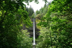 Latourell Falls Portland Oregon area in spring Royalty Free Stock Images