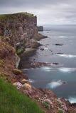 Latrabjarg is Europe's  largest bird cliff. Stock Image