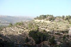 Latran和自己的Karem镇在犹太 以色列 风景在街道上和在镇的郊区 库存图片