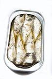Latta aperta con le sardine fotografia stock
