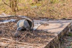 Latta arrugginita dell'acqua Immagini Stock Libere da Diritti
