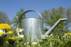 Latta d'innaffiatura del giardino Fotografie Stock