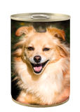 Latta dell'alimento di cane Fotografie Stock Libere da Diritti
