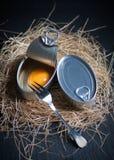 Latta di alluminio con l'interno del tuorlo d'uovo isolato su fondo nero Fotografia Stock Libera da Diritti