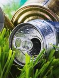 Latta di alluminio sgualcita su un'erba verde Immagini Stock Libere da Diritti