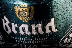 Latta di birra di marca, fine su, goccioline di acqua/condensazione sulla latta di birra immagini stock