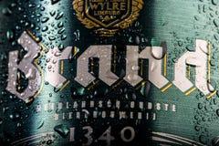 Latta di birra di marca, fine su, goccioline di acqua/condensazione sulla latta di birra fotografia stock libera da diritti