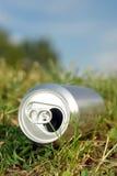 Latta di birra nell'erba Fotografia Stock