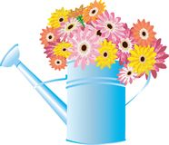 Latta di innaffiatura blu con i fiori Fotografia Stock Libera da Diritti