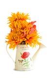 Latta di innaffiatura con i fiori di autunno Fotografia Stock