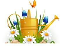 Latta di innaffiatura del giardino con i fiori Fotografia Stock