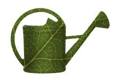 Latta di innaffiatura nel verde dei fogli fotografie stock