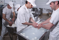 Lattai, che preparano la mozzarella Immagine Stock