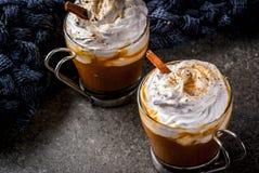 Latte caldo e piccante della zucca Fotografie Stock