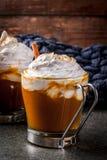 Latte caldo e piccante della zucca Fotografia Stock