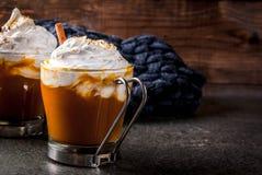 Latte caldo e piccante della zucca Fotografia Stock Libera da Diritti