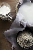 Latte casalingo fresco dell'avena Immagini Stock