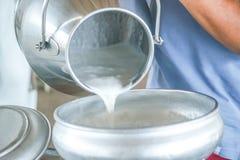 Latte crudo Immagini Stock
