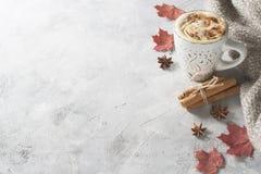 Latte d'épice de potirons avec des potirons image stock