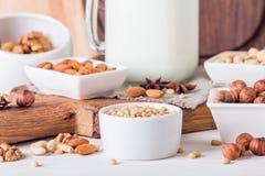 Latte del vegano dai dadi in barattolo di vetro Immagini Stock Libere da Diritti