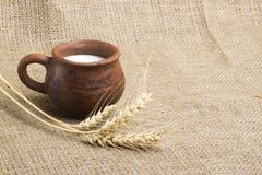 Latte della tazza dell'argilla, 2 croissant su un supporto di legno, spighette del grano, fotografia stock libera da diritti