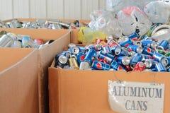 Latte di soda di alluminio ordinate per riciclare Fotografia Stock