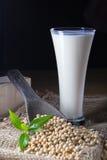 Latte di soia immagine stock