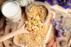 Latte di soia con le soie Fotografia Stock Libera da Diritti