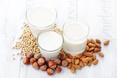 Latte differente del vegano Immagine Stock