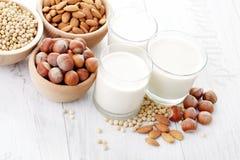 Latte differente del vegano Fotografie Stock Libere da Diritti