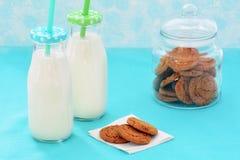 Latte e biscotti nel formato orizzontale Immagine Stock Libera da Diritti
