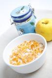 Latte e fiocchi di granturco Fotografia Stock Libera da Diritti