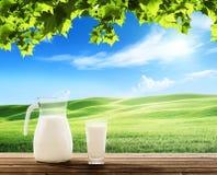 Latte e giacimento soleggiato della molla fotografie stock