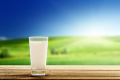 Latte e giorno soleggiato fotografia stock